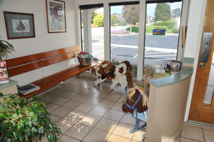 We have separate cat and dog waiting areas in the Lobby