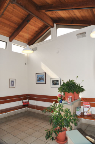 The dog waiting area. We love the high vaulted wood ceilings!