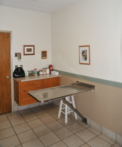 One of the two cat or small dog exam rooms.