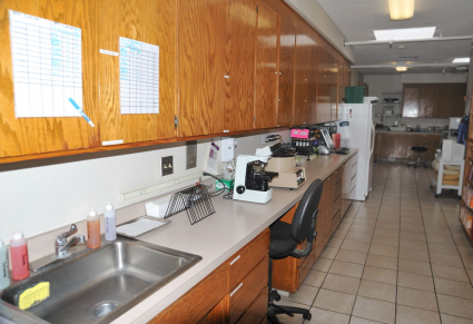 Pharmacy and wet lab area